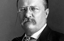 Teddy Roosevelt on Courage
